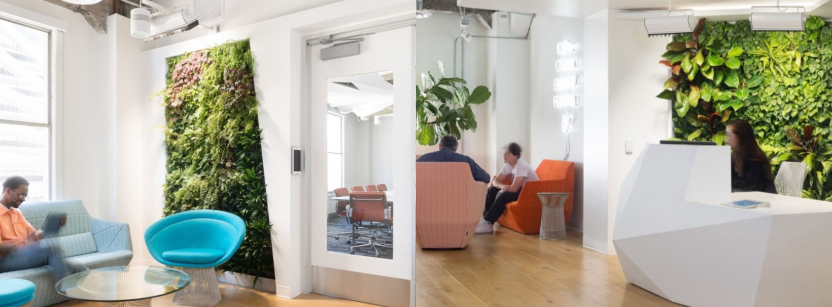 How To Incorporate Biophilic Design In Your Office 5 Simple Steps